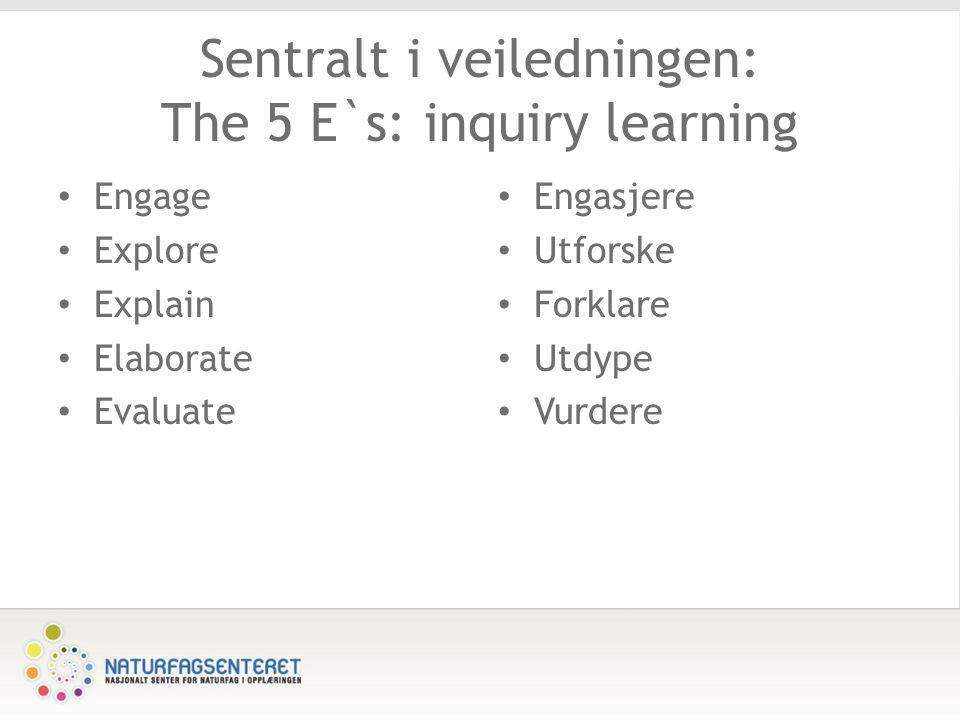 Sentralt i veiledningen: The 5 E`s: inquiry learning