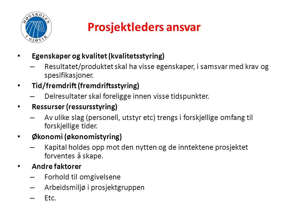Prosjektleders ansvar