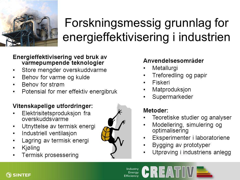 Forskningsmessig grunnlag for energieffektivisering i industrien