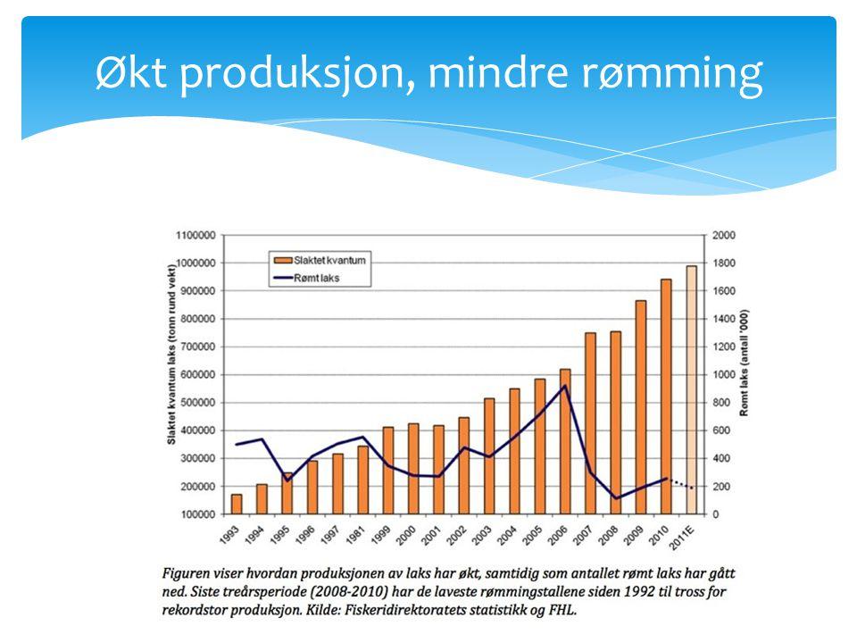 Økt produksjon, mindre rømming