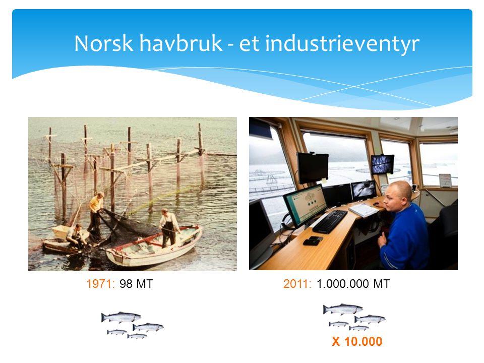 Norsk havbruk - et industrieventyr
