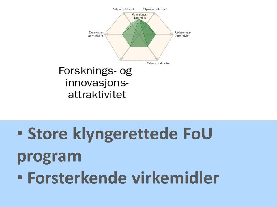 Store klyngerettede FoU program