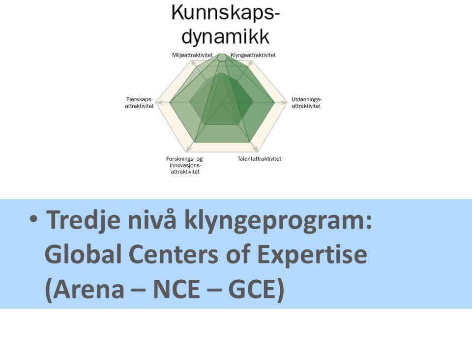 Tredje nivå klyngeprogram: