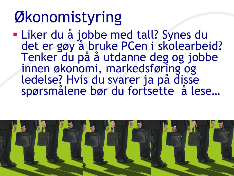 Økonomistyring