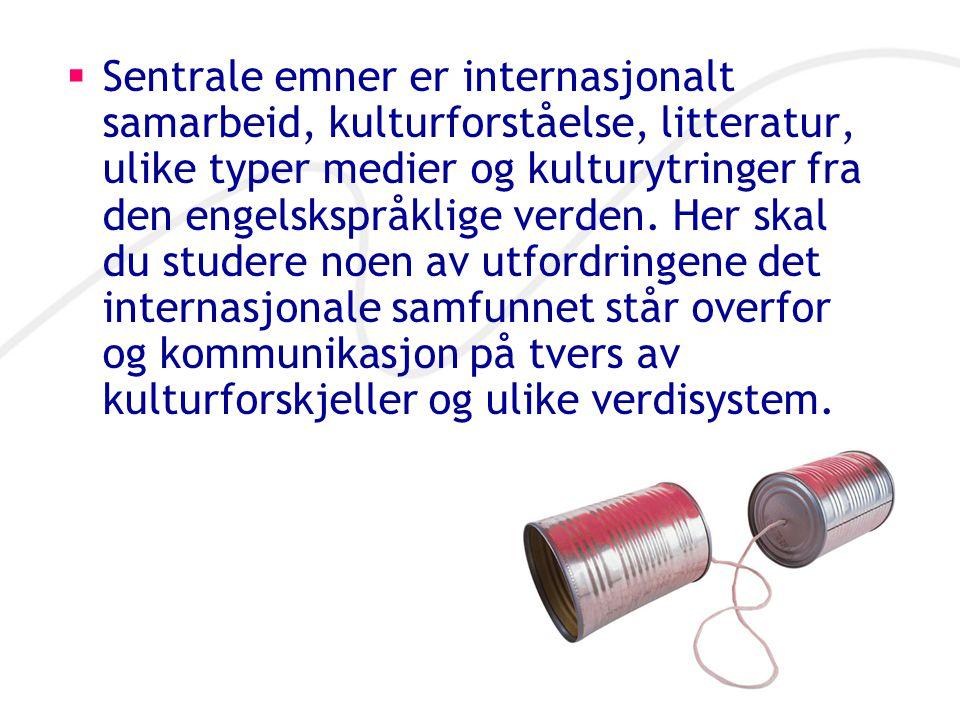 Sentrale emner er internasjonalt samarbeid, kulturforståelse, litteratur, ulike typer medier og kulturytringer fra den engelskspråklige verden.