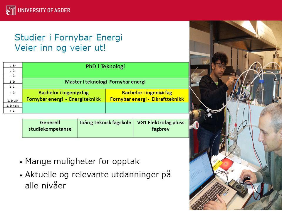 Studier i Fornybar Energi Veier inn og veier ut!