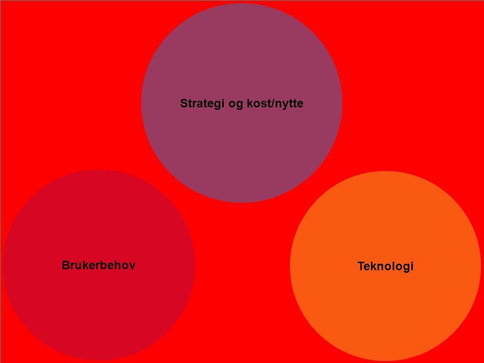 Strategi og kost/nytte