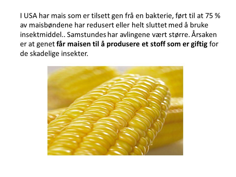 I USA har mais som er tilsett gen frå en bakterie, ført til at 75 % av maisbøndene har redusert eller helt sluttet med å bruke insektmiddel..