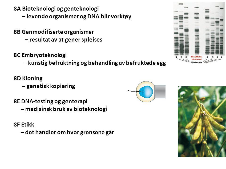 8A Bioteknologi og genteknologi