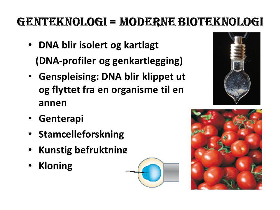 Genteknologi = moderne bioteknologi
