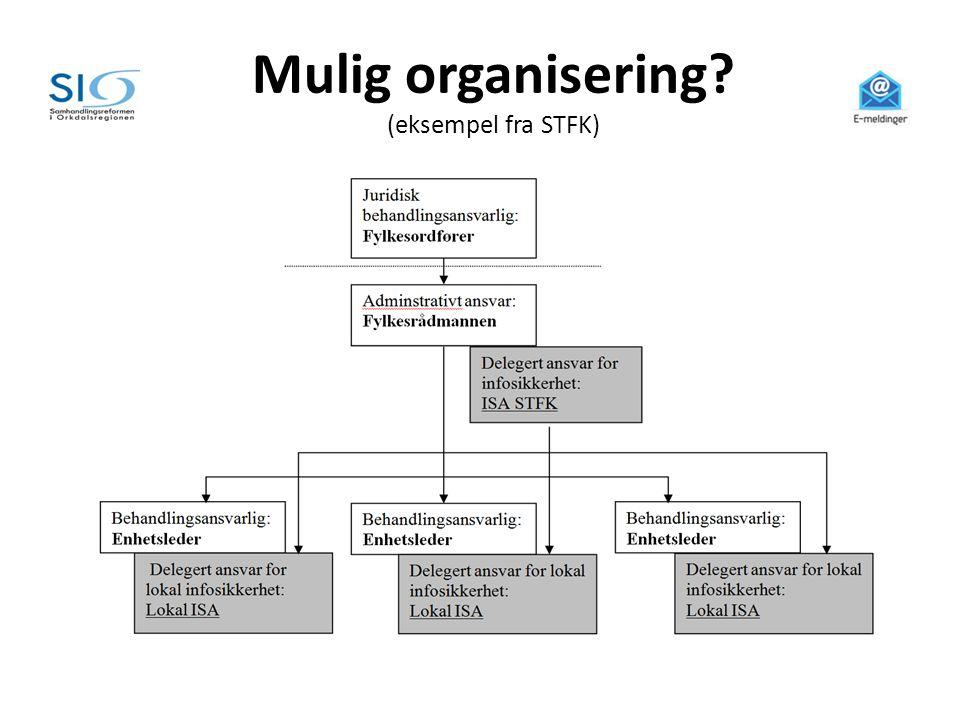 Mulig organisering (eksempel fra STFK)