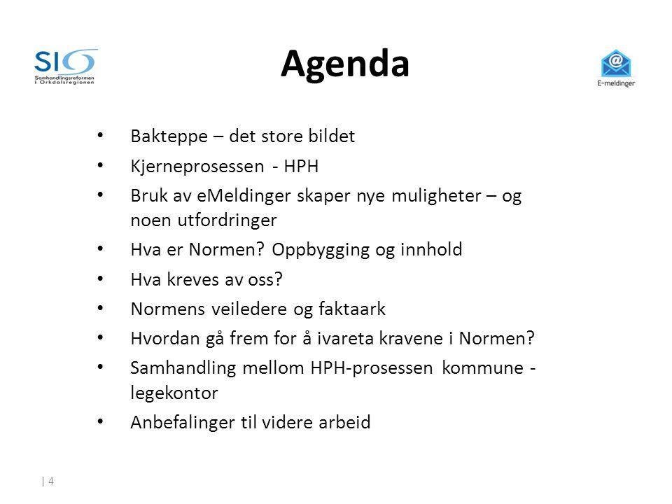 Agenda Instruktørnotater: Bakteppe – det store bildet