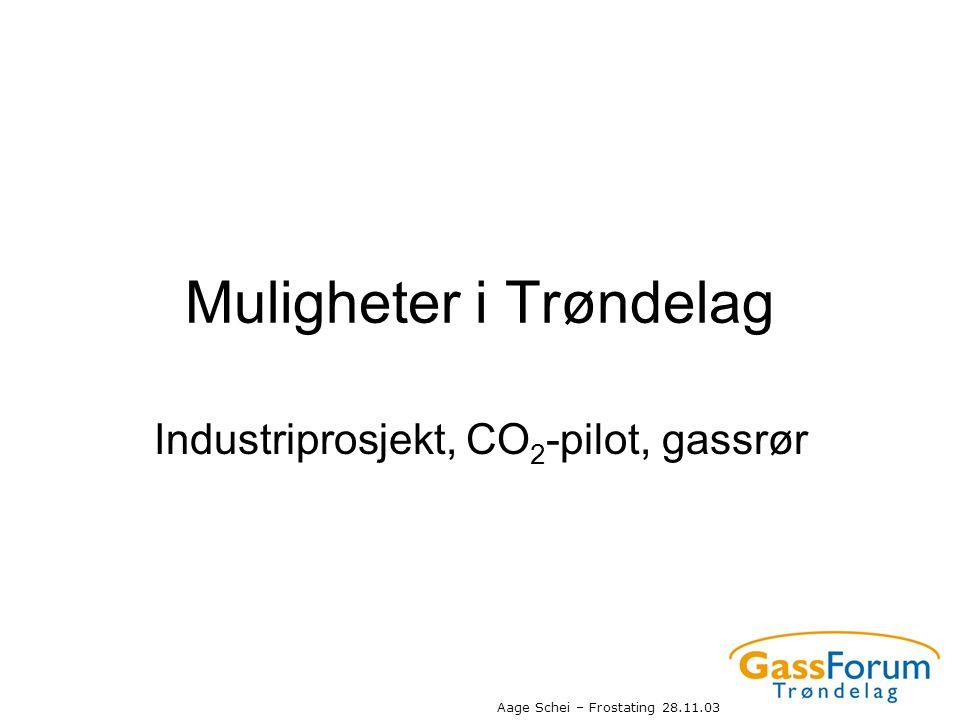 Muligheter i Trøndelag