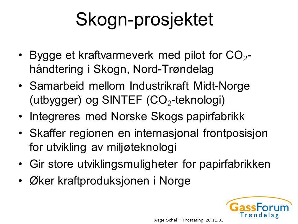 Skogn-prosjektet Bygge et kraftvarmeverk med pilot for CO2-håndtering i Skogn, Nord-Trøndelag.