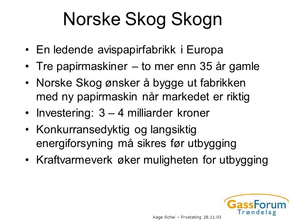 Norske Skog Skogn En ledende avispapirfabrikk i Europa