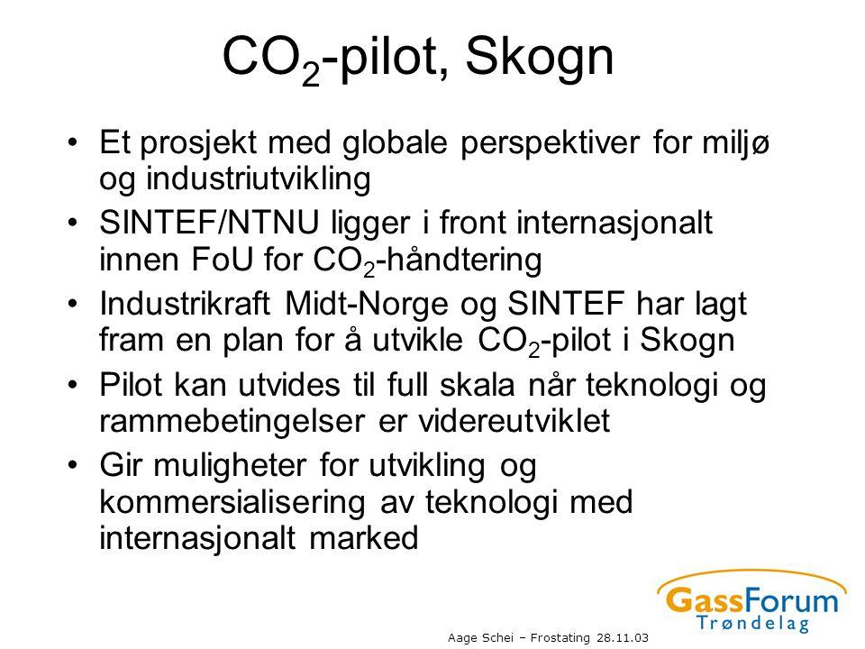 CO2-pilot, Skogn Et prosjekt med globale perspektiver for miljø og industriutvikling.