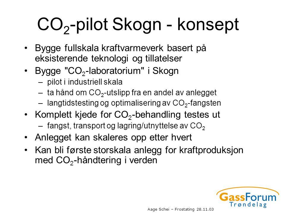 CO2-pilot Skogn - konsept