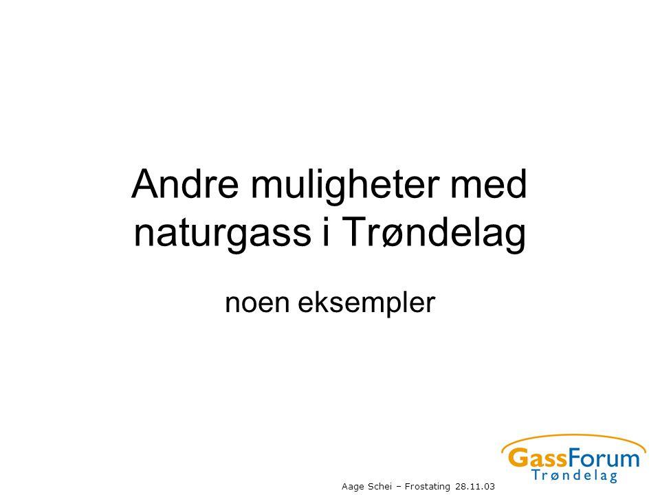 Andre muligheter med naturgass i Trøndelag