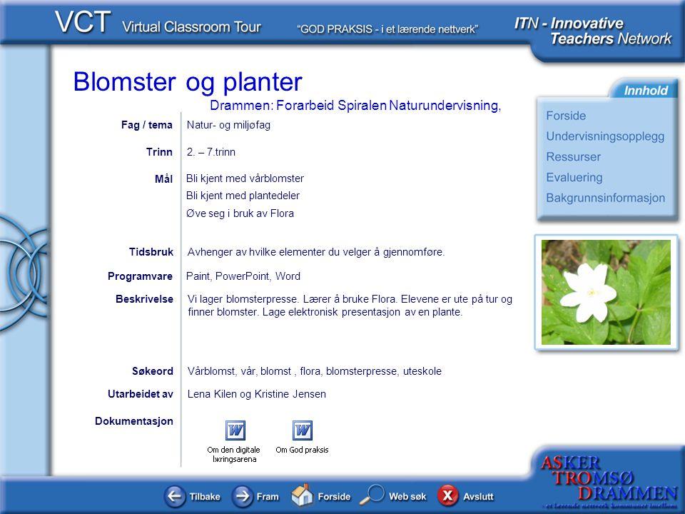 Fag / tema Natur- og miljøfag. Trinn. 2. – 7.trinn. Bli kjent med vårblomster. Bli kjent med plantedeler.