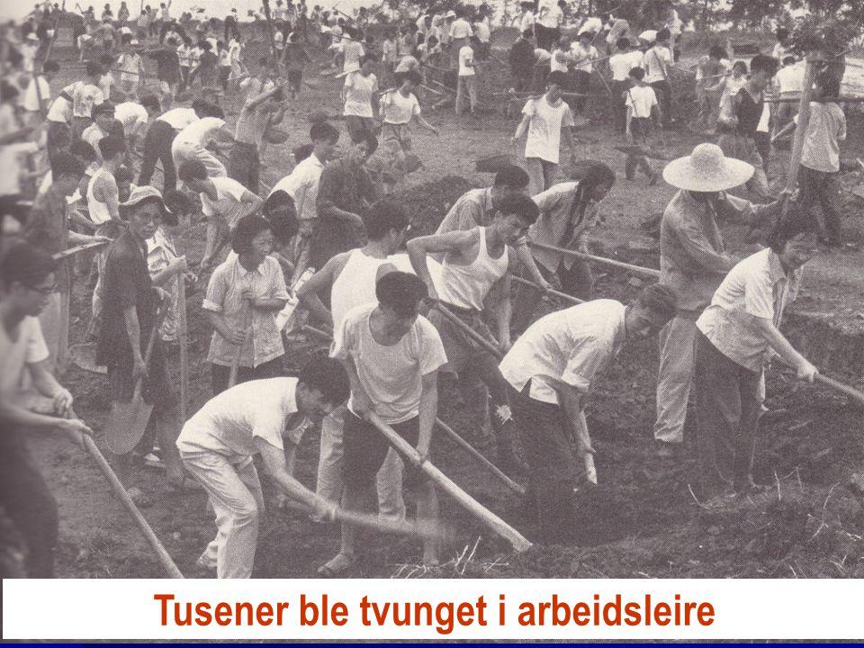 Tusener ble tvunget i arbeidsleire