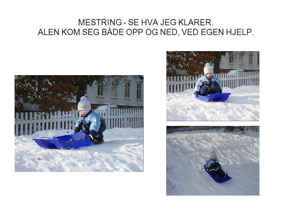 MESTRING - SE HVA JEG KLARER