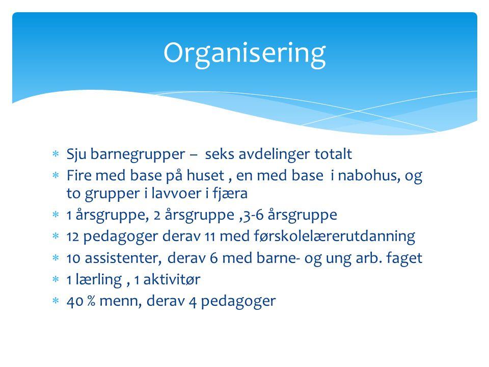 Organisering Sju barnegrupper – seks avdelinger totalt