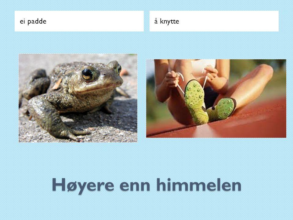 ei padde å knytte Høyere enn himmelen