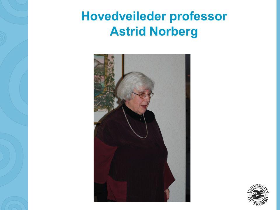 Hovedveileder professor