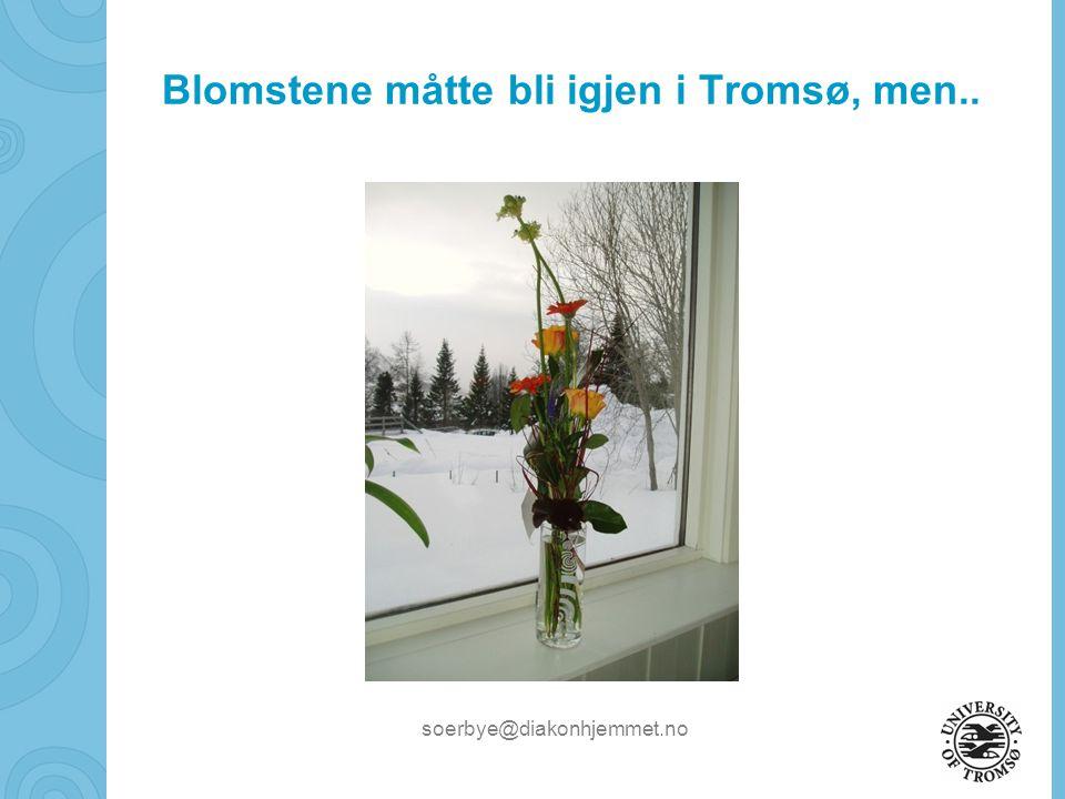 Blomstene måtte bli igjen i Tromsø, men..