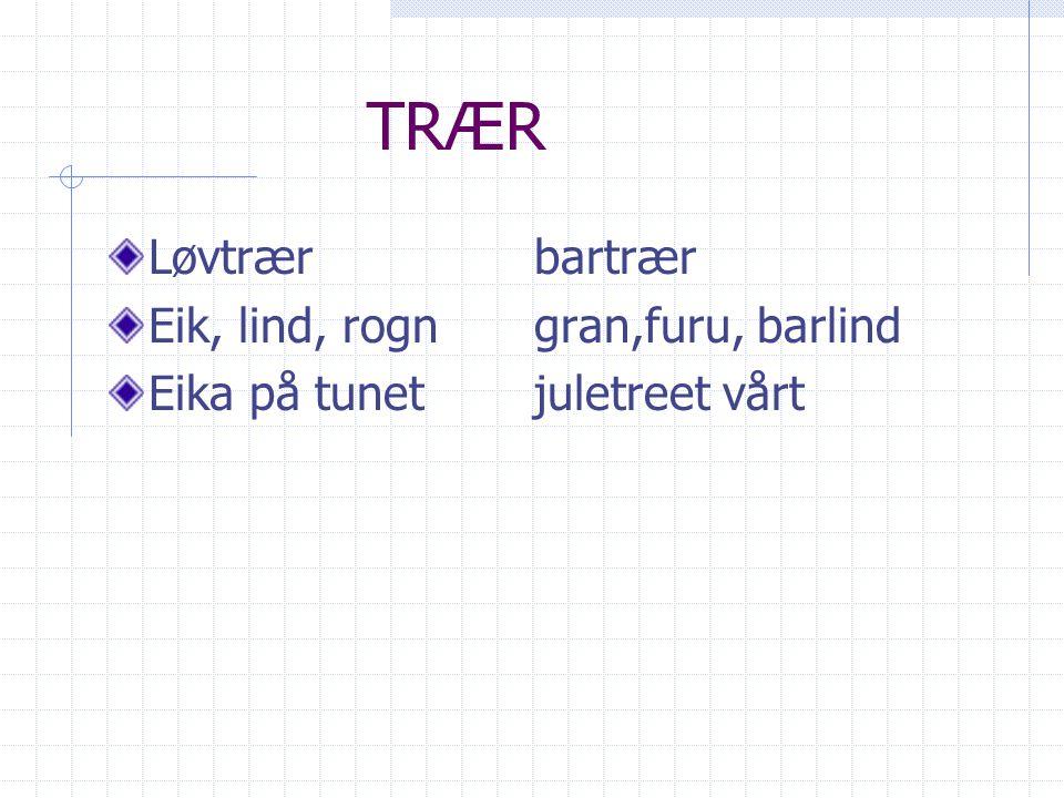 TRÆR Løvtrær bartrær Eik, lind, rogn gran,furu, barlind