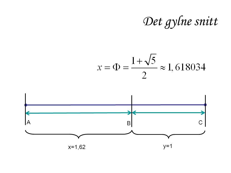 Det gylne snitt A B C x=1,62 y=1