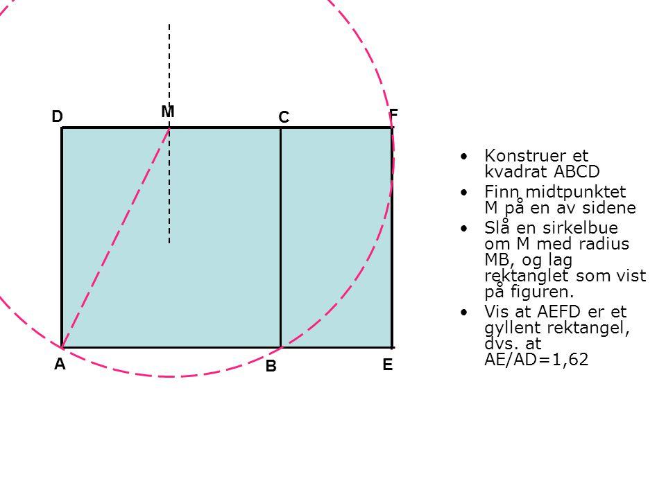 Konstruer et kvadrat ABCD Finn midtpunktet M på en av sidene