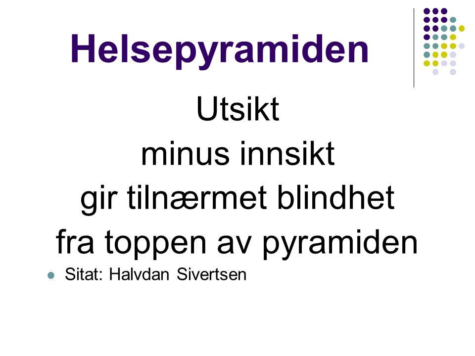 Helsepyramiden Utsikt minus innsikt gir tilnærmet blindhet