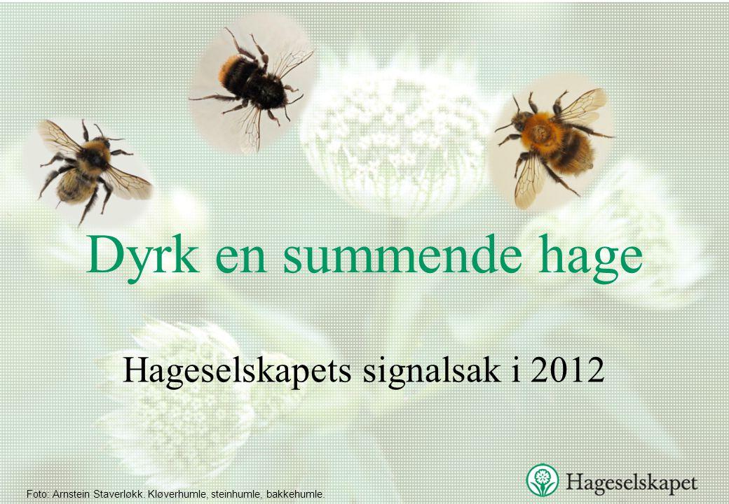 Hageselskapets signalsak i 2012