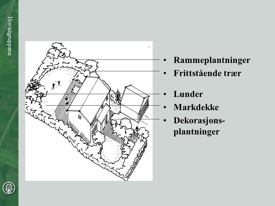 Dekorasjons-plantninger