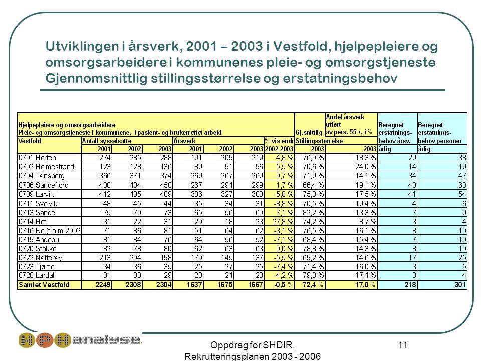 Oppdrag for SHDIR, Rekrutteringsplanen 2003 - 2006