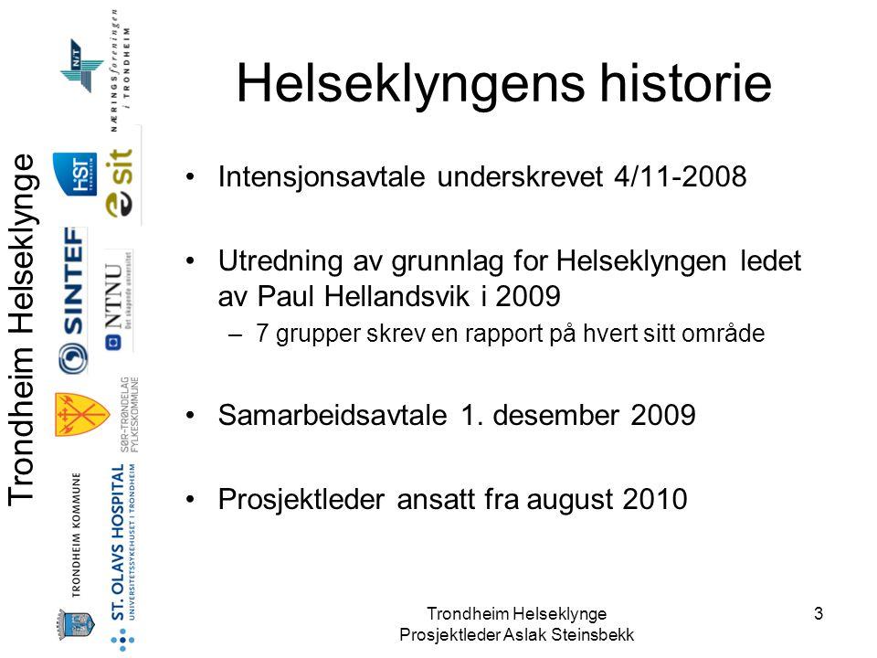 Helseklyngens historie