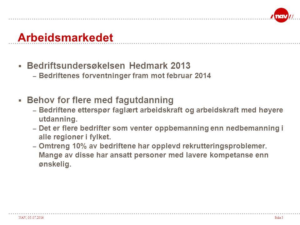 Arbeidsmarkedet Bedriftsundersøkelsen Hedmark 2013
