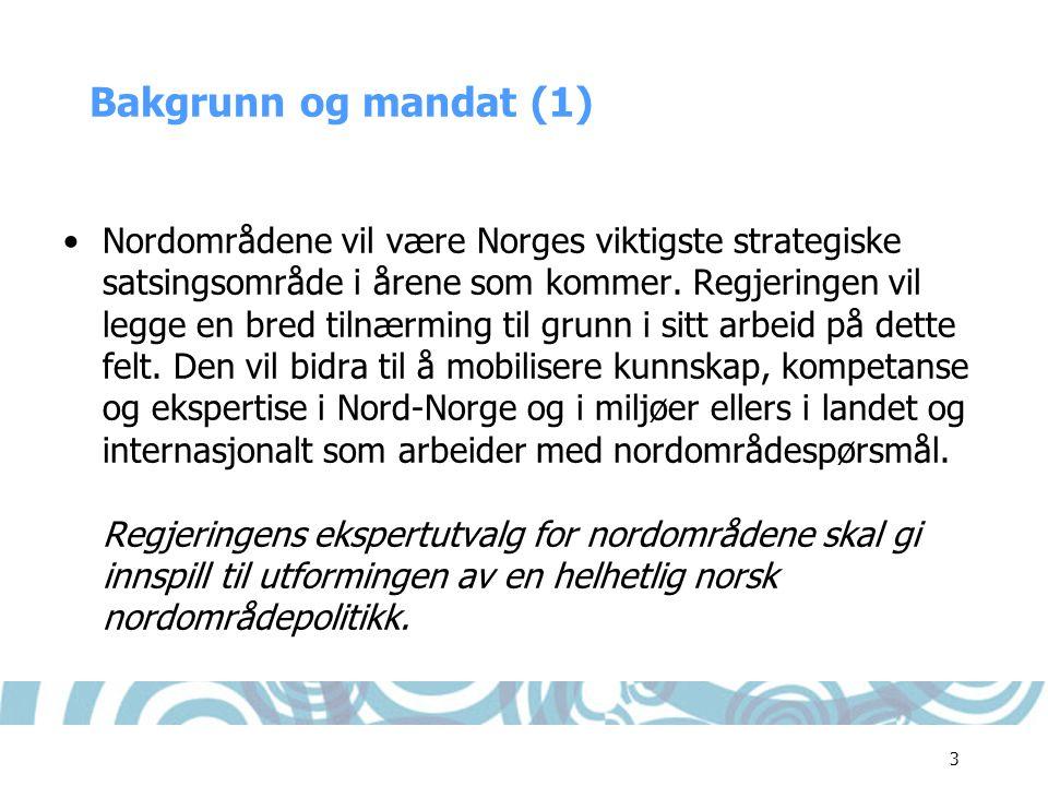 Bakgrunn og mandat (1)