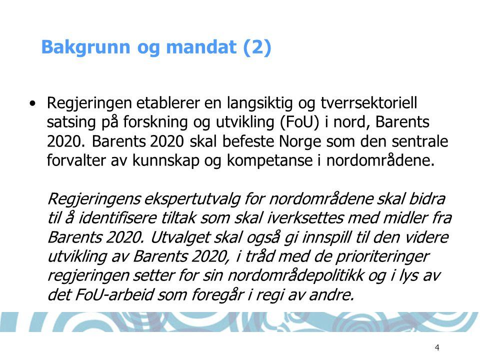 Bakgrunn og mandat (2)