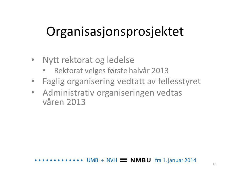 Organisasjonsprosjektet