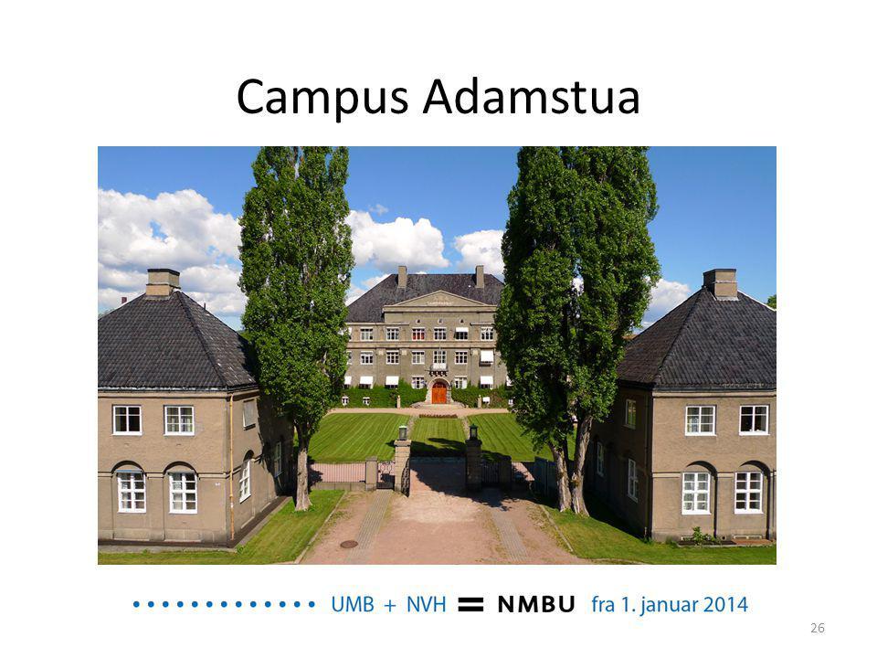 Campus Adamstua