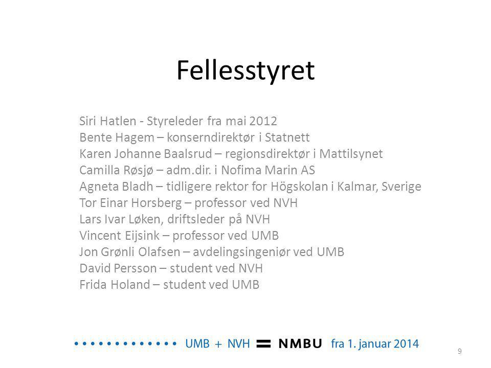 Fellesstyret Siri Hatlen - Styreleder fra mai 2012
