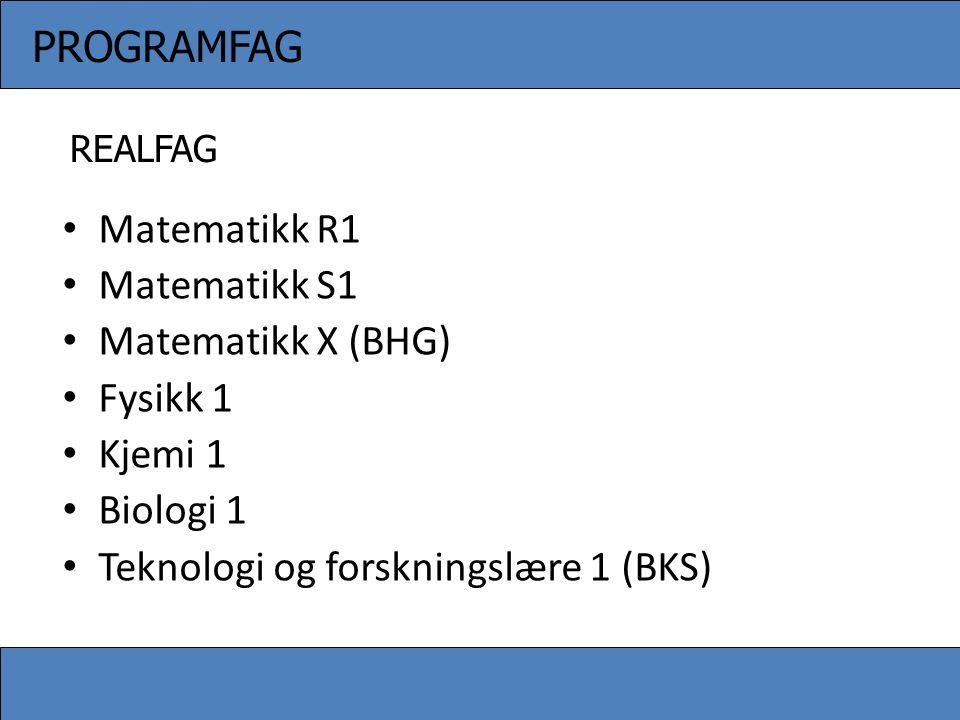 Teknologi og forskningslære 1 (BKS)