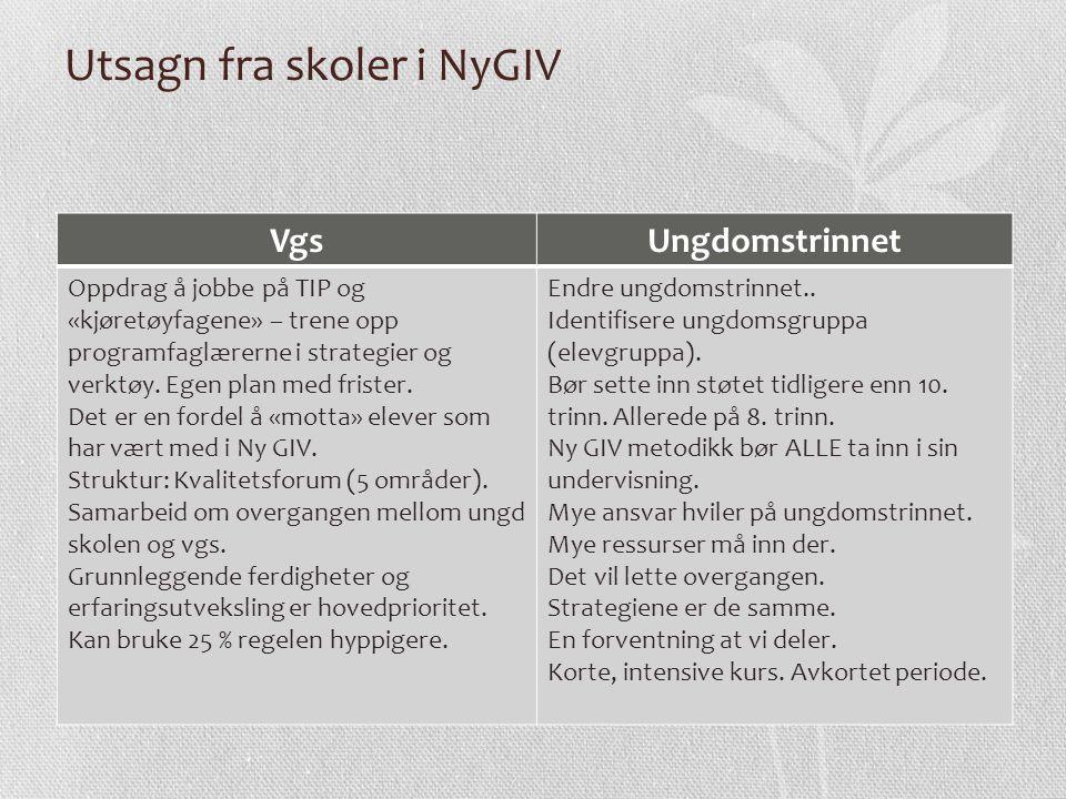 Utsagn fra skoler i NyGIV