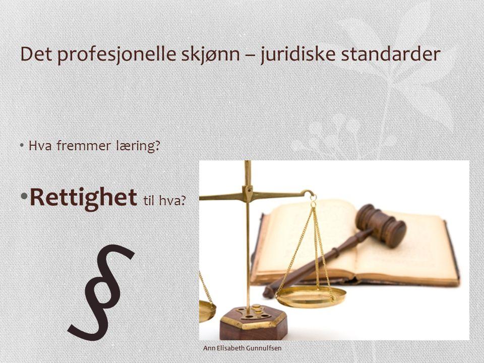 Det profesjonelle skjønn – juridiske standarder