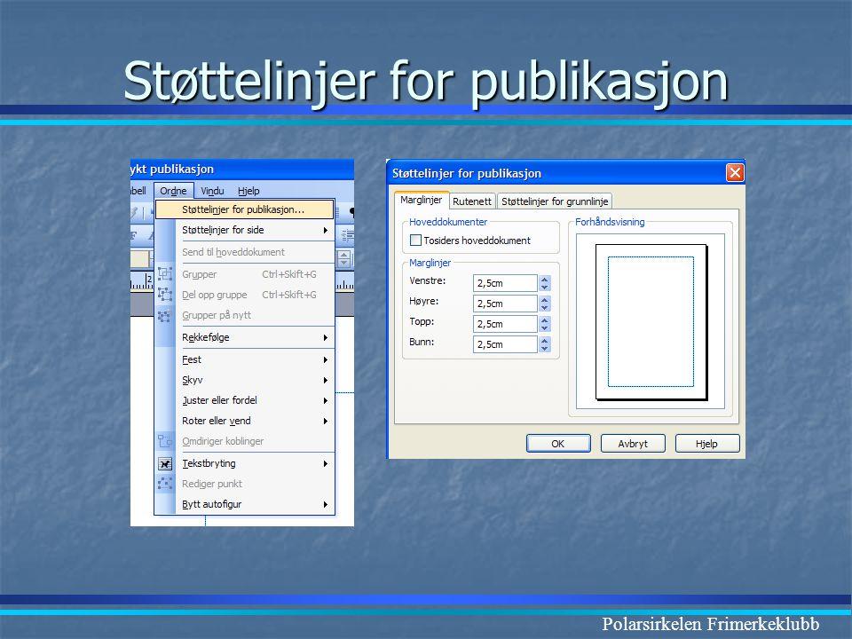 Støttelinjer for publikasjon