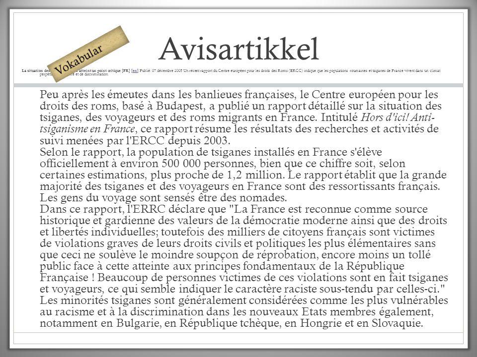 Avisartikkel Vokabular