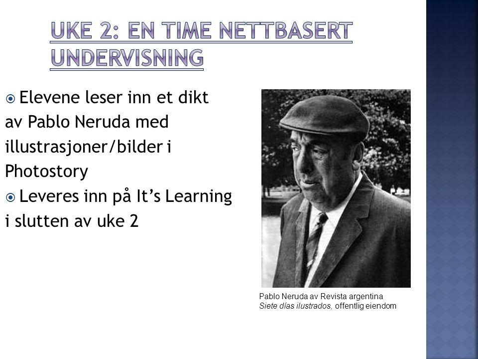 Uke 2: En time nettbasert undervisning