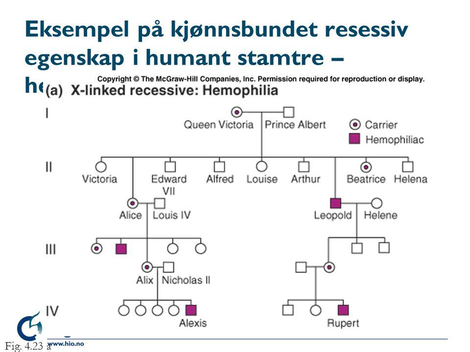 Eksempel på kjønnsbundet resessiv egenskap i humant stamtre – hemophilia